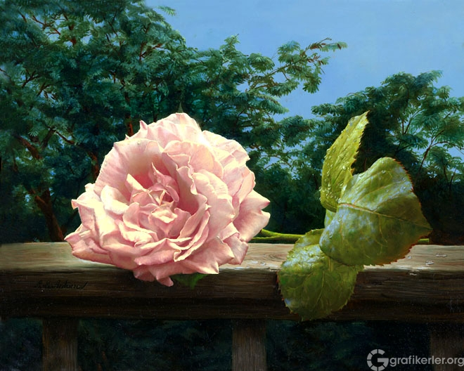16-rose-painting