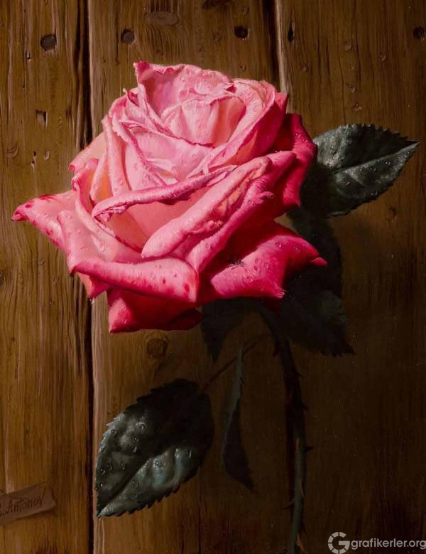 19-rose-oil-painting