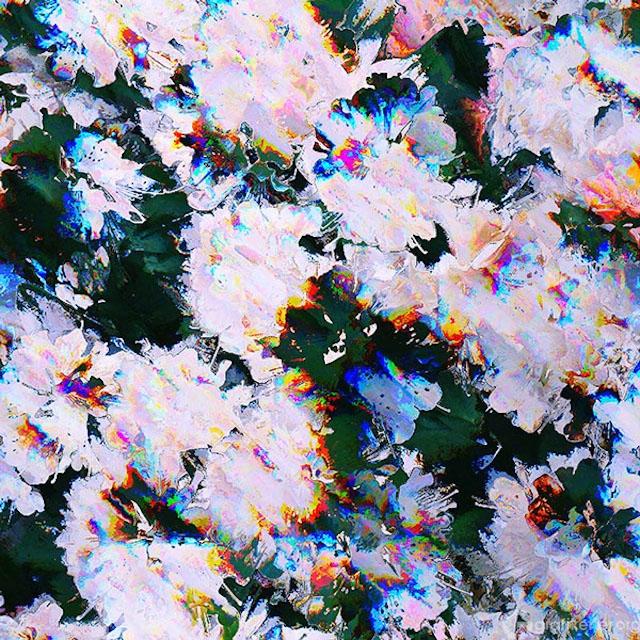 Digital-Glitch-Art2