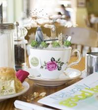 Tea-Small__880