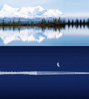 anna-marinenko-nature-sound-waves-12-600x487