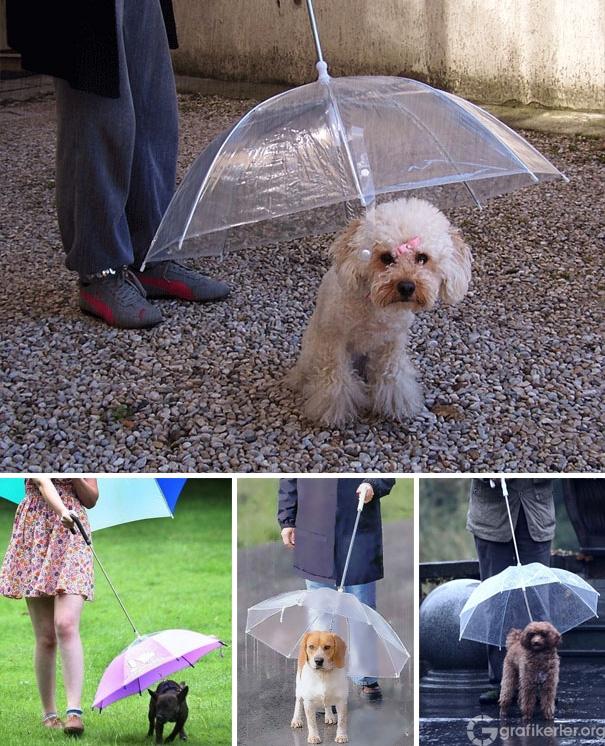 creative-umbrellas-2-20 (1)