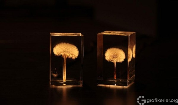 oled-dandelion-lights-takao-inoue-1-600x353