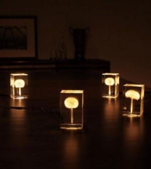 oled-dandelion-lights-takao-inoue-2-600x363