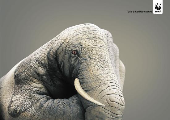 public-awareness-ads-06