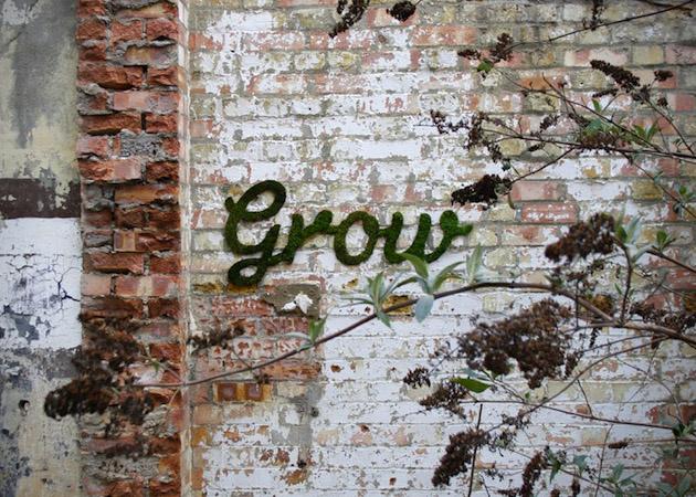 yosun-grafitti-3
