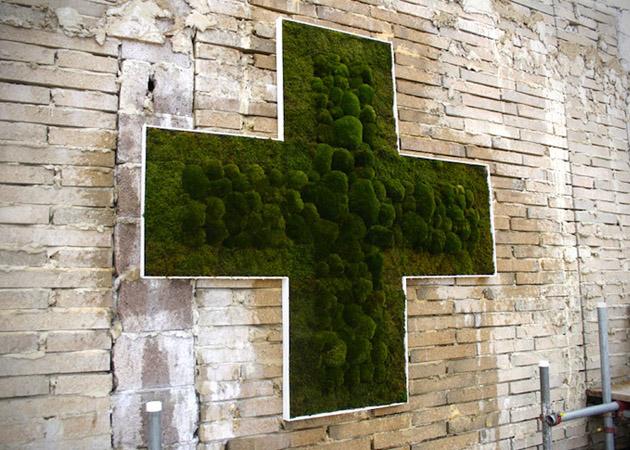 yosun-grafitti-4